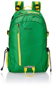 amazon-gif-2016-buy-the-vertical-router-green-casual-backpack-vr-rou06rk-pro2015-at-rs-539-only