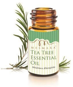 (Live at 2 PM) Amazon - Buy Mesmara Australian Tea Tree Essential Oil 15 ml 100% Pure Natural & Undiluted at Rs 1 only