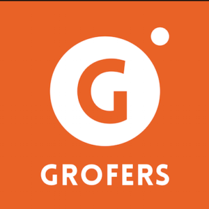 grofers icici