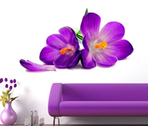 Decals Design 'Flowers Beautiful Spring Crocus Lily Fresh' Wall Sticker at rs.119