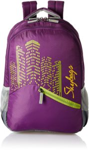 skybags casual back pack