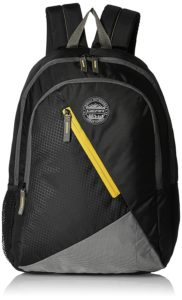 Amazon- Buy Gear 28 Ltrs Black and Yellow Casual Backpack at Rs 399 image