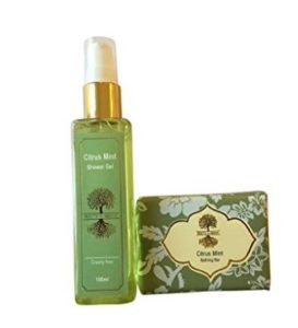 Amazon – Buy Roots & Above Citrus Mint Glycerine Bathing Bar, 100g and Citrus Mint Shower Gel, 100ml at Rs.124 only image
