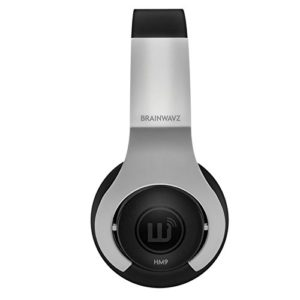 Brainwavz HM9 Hi-Fi Noise Isolating Headphones