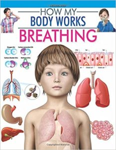 Amazon- Buy How my body works Series Book