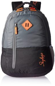 Skybags Leo 26 Ltrs Grey Casual Backpack
