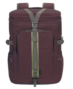 Targus Seoul 14-inch Laptop Backpack (Plum) at rs.717