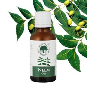 Amazon - buy Old Tree Neem Oil for Dandruff Removal, 30ml at Rs 74 only