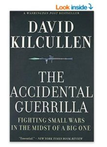 The Accidental Guerrilla at rs.117