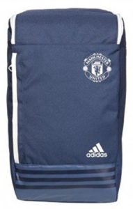 Adidas 35 Ltrs Minblu and Cwhite Casual Backpack (S95100NS)