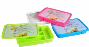 Amazon- Buy Haixing Plastic Cutlery Box with Lid, 200ml, Multi-colour at Rs 105