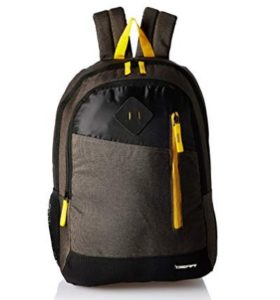 Gear 30 Ltrs Grey and Yellow Casual Backpack at rs.416