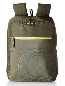 Genius 20 Ltrs Olive Laptop Backpack at rs.349