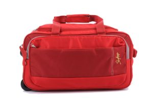 (Steal) Amazon - Buy Skybag, Aristocrat, Pronto and other Branded Duffle at 80% off starting from Rs. 450