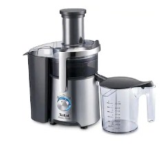 TEFAL Easy Fruit 800 W Juicer Mixer (Black & Steel)