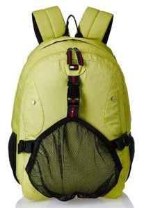 Tommy Hilfiger Rover 22.08 Ltrs Lime Laptop Backpack at rs.657