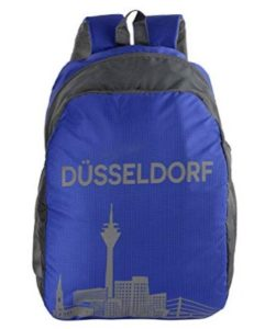 Dussledorf Polyester 20 Liters Grey and Blue Laptop Backpack at rs.349