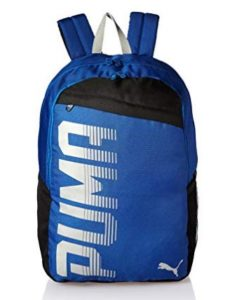 Puma Limoges Laptop Backpack (7566602) at rs.449