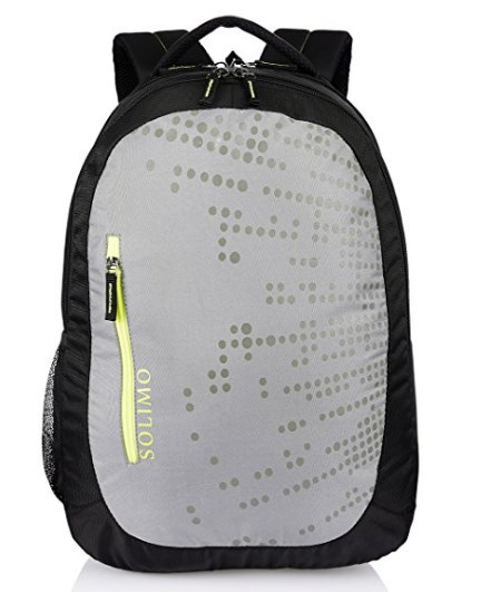 Amazon Brand - Solimo Laptop Backpack for 15.6-inch Laptops (28 litres, Grey) at rs.249