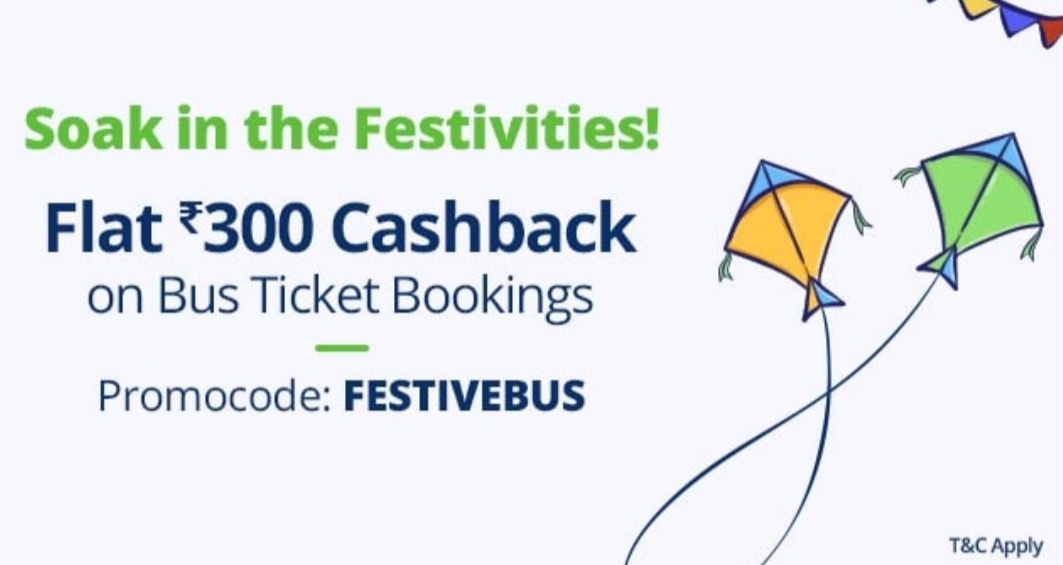 festivebus bus ticket