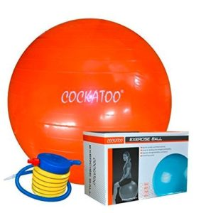 Cockatoo Anti-Burst Gym Ball