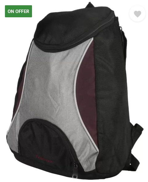 Fastrack backpack
