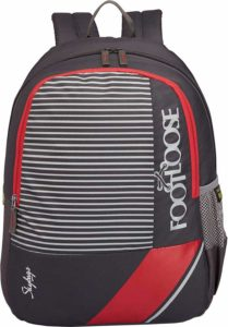 Skybags Bro 25 Ltrs Grey Casual Backpack (BRO)