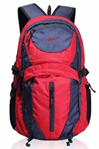 F Gear Ops 30 Liters Travel Backpack Rs 615 amazon dealnloot