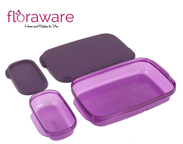 Floraware Max Fresh Super Air Tight Lunch Box Set, Purple