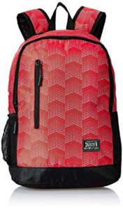 Flying Machine 6 Ltrs Red School Backpack Rs 324 amazon dealnloot