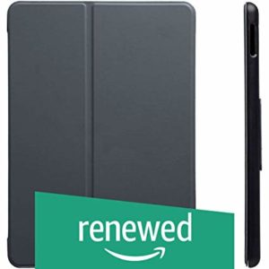 Renewed AmazonBasics New iPad 2017 Smart Case Rs 120 amazon dealnloot