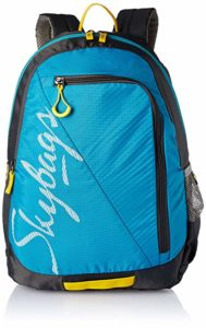 Skybags Blue Casual Backpack BPGRO5ELBU Rs 649 amazon dealnloot