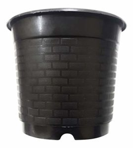 Unique Plastic Nursery Pot Set 6 inch Rs 165 amazon dealnloot