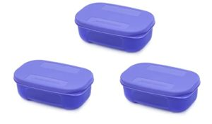 Signoraware ICY Cool Plastic Container Set 140ml Rs 91 amazon dealnloot