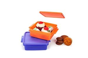 Signoraware Small Container Set 850ml Set of Rs 156 amazon dealnloot
