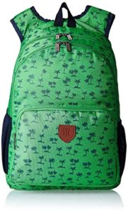 Tommy Hilfiger Green Casual Backpack TH BTS06SPR Rs 565 amazon dealnloot
