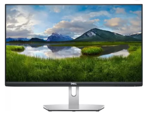DELL 24 inch Full HD IPS Panel Monitor (S2421HN)  (AMD Free Sync)