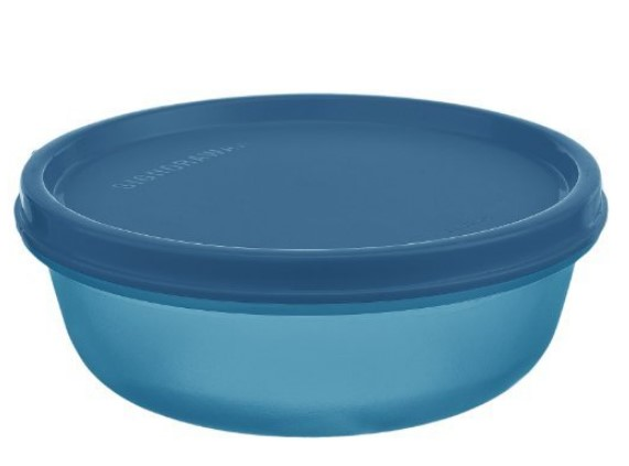 Signoraware Buddy Plastic Bowl Container, 300ml, T Blue