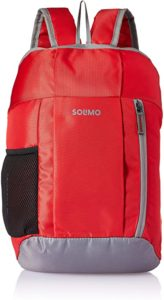 Amazon Brand Solimo Hiking Day Backpack 15L Rs 178 amazon dealnloot